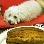 recette CAKE AU MIEL