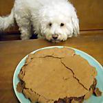 recette FONDANT AU CHOCOLAT DE ROSY