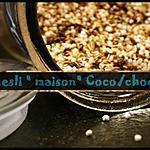 recette ** müesli/ granola maison en dix minutes : flocons d'avoine, billes de quinoa soufflées, noix de coco et chocolat **